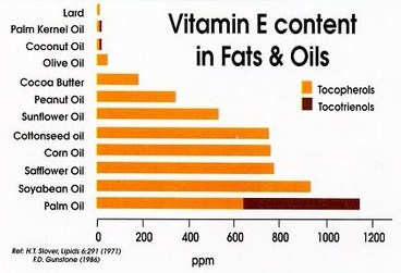 What do YOU know about Vitamin E?