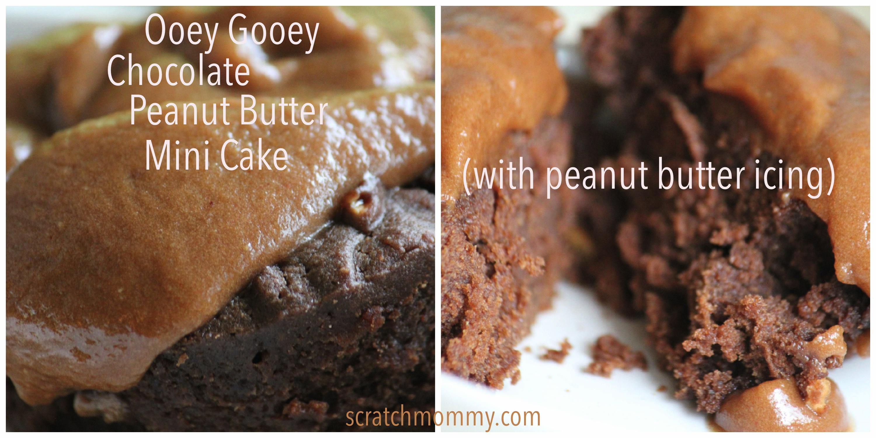 Ooey Gooey Chocolate Peanut Butter Mini Cake (with peanut butter icing ...