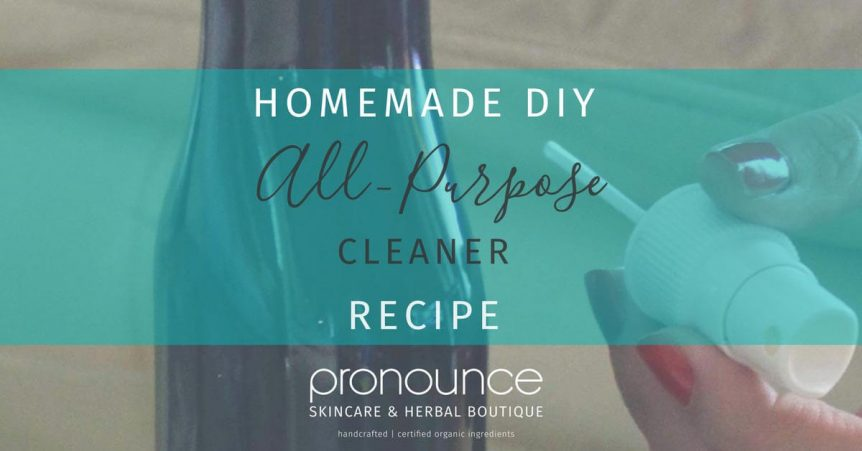 Diy All Purpose Cleaner Zap Household