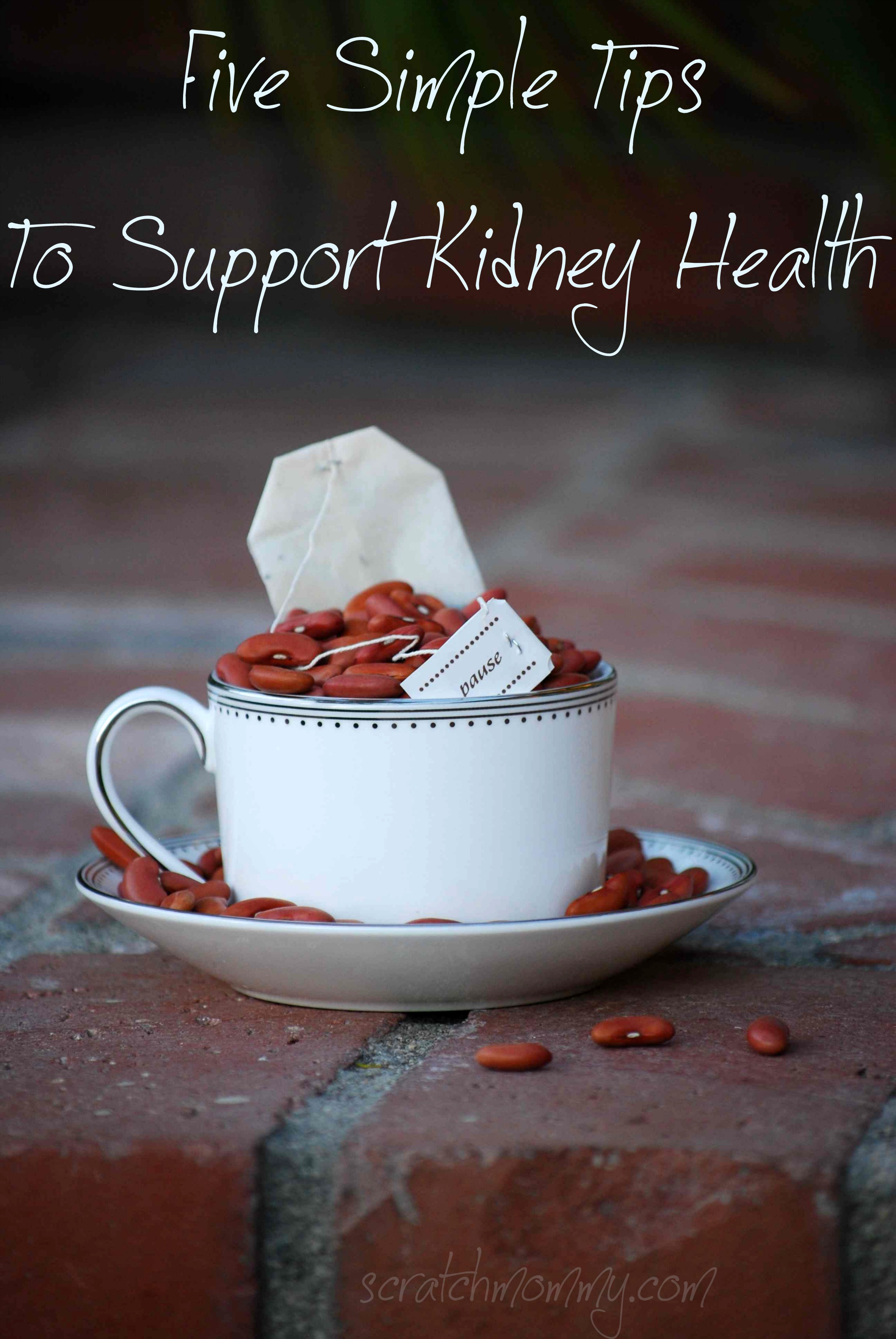 5 tips for kidney health a dandelion smoothie recipe the following ideas are just a few avenues weve adopted in our family to not only take care of our overall health but specifically kidney health forumfinder Images