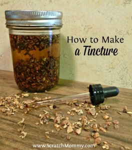 Using herbs for healing is a perfect and natural way to support the body's own natural wonder! Check out this tutorial on how to make a tincture.