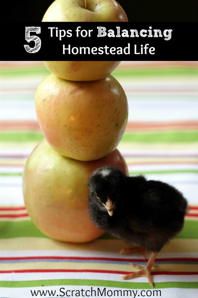 Running a homestead is hard work & can often leave you feeling overwhelmed. Here are 5 tips for balancing homestead life so you can avoid homestead burnout.