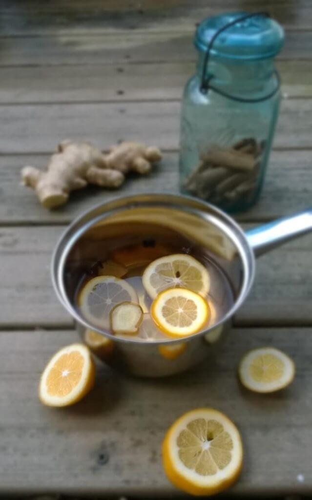 ginger orange portpourri