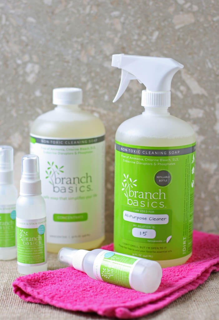 What makes cleaning actually fun? A product that is non-toxic & WORKS on EVERYTHING! Here are 7 reasons you NEED to switch to Branch Basics' non-toxic soap.