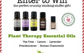 Enter to win Plant Therapy Essential Oils. One winner will receive Frankincense, Lavender, Tea Tree, Roman Chamomile, and Lemon!