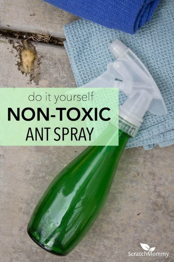 Do you have an ant problem but don't want to use toxic products around your home? Try this DIY non-toxic ant spray that kills the ants on contact. Bye-bye ants!