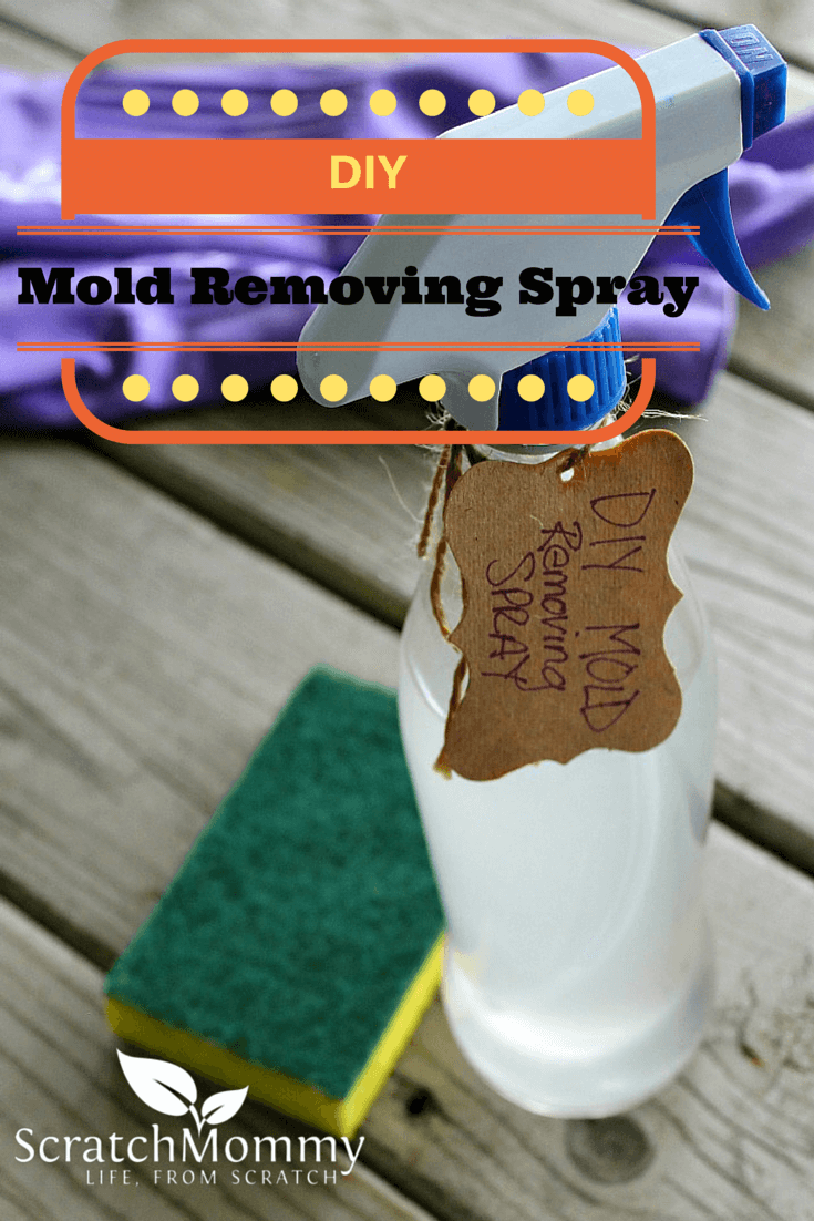 DIY Mold Removing Spray Recipe