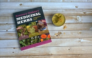 Medicinal Herbs: A Beginner's Guide {Book Review}