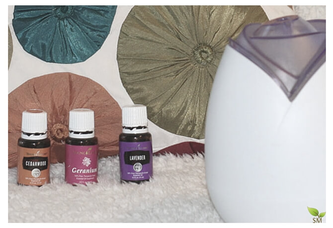 Top 10 Calming Essential Oils You Can Diffuse Safely In Your Home - Scratch Mommy