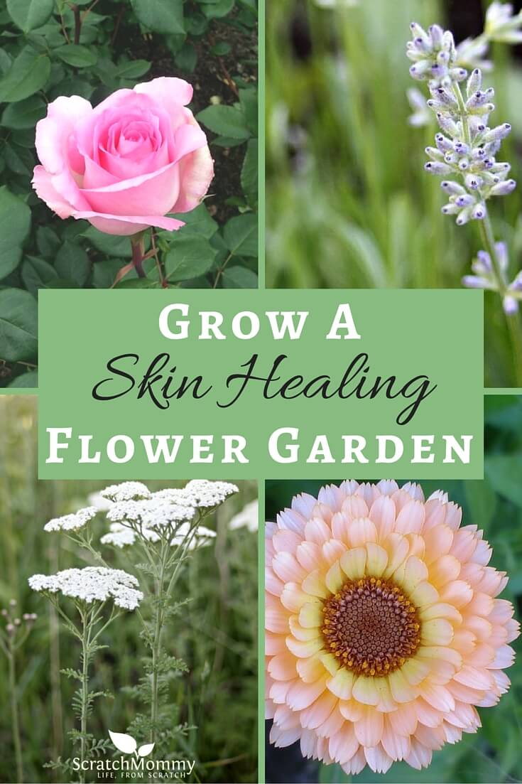 Grow A Skin Healing Flower Garden Pronounce Scratch Mommy