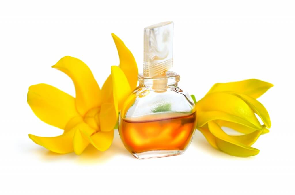 Learn the many benefits of ylang ylang essential oil for hair and how to use it- Scratch Mommy