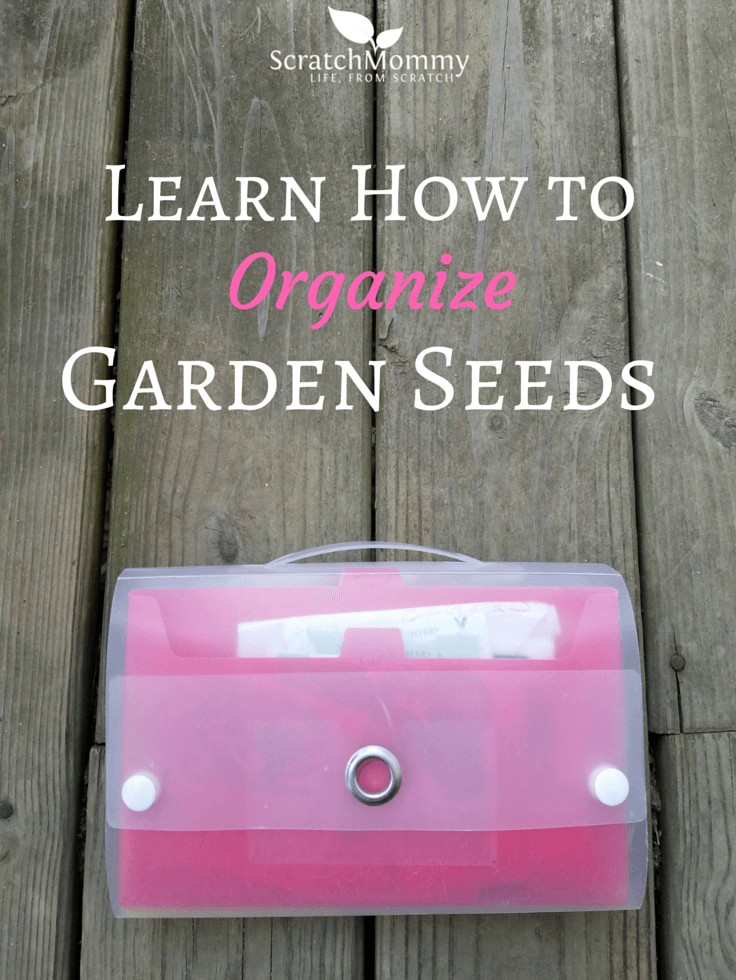 How can i learn to organize?