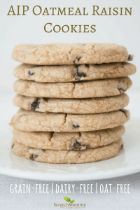 AIP Oatmeal Raisin Cookies Recipe (grain-free, dairy-free, & oat-free!)- Scratch Mommy