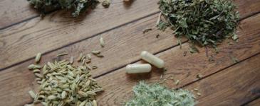 9 Herbs That Benefit Breastfeeding