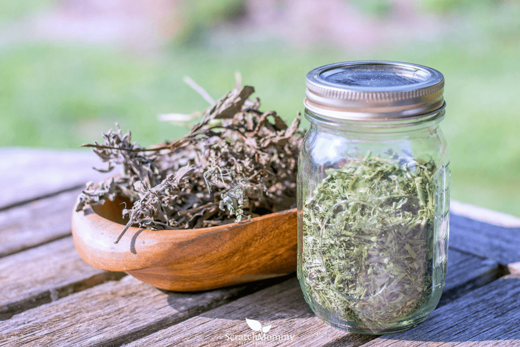 How to Store Herbs for Potency and Longevity