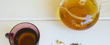 Calming Catnip Herbal Tea Recipe