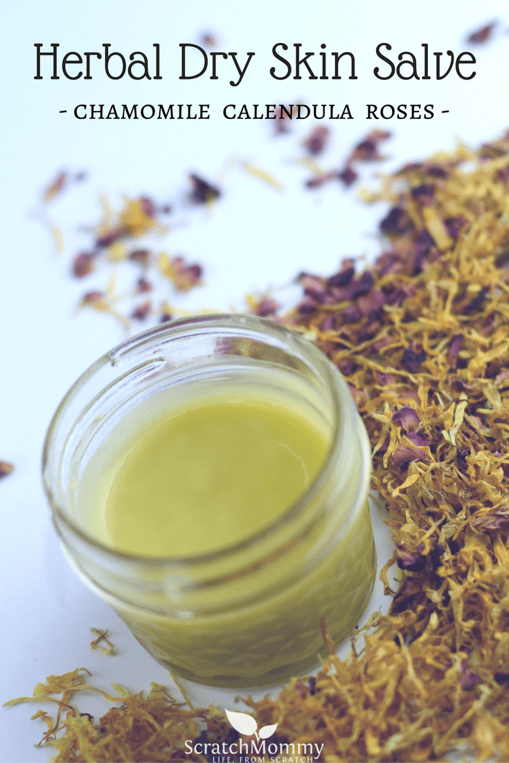 Learn how to make our DIY recipe for a soothing and healing Herbal Dry Skin Salve (with chamomile, calendula, & roses)- Scratch Mommy